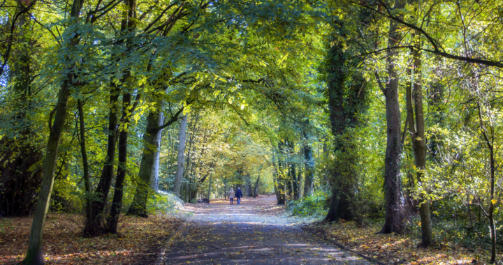 Lytham Green Drive