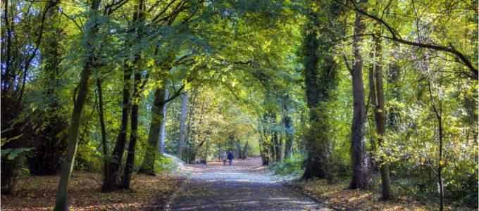 Green Drive, Lytham